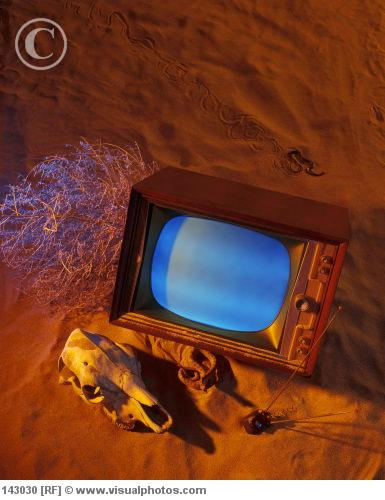 Old TV set on sand with skull dry bush and snakes